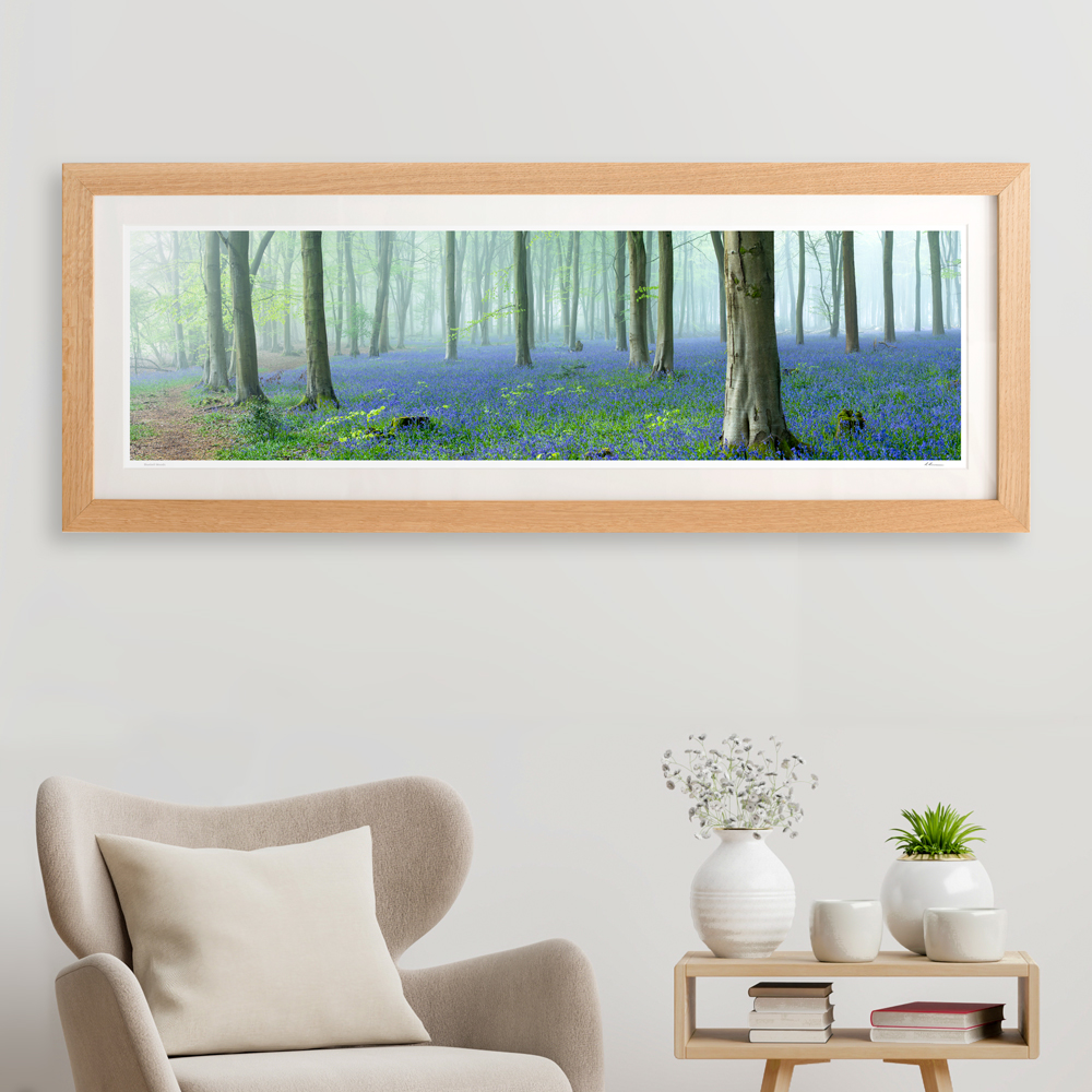 Framed Pano Bluebells 2