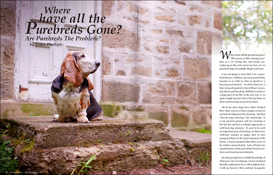 11tear_sheets_cottage_dog_magazine_2.jpg