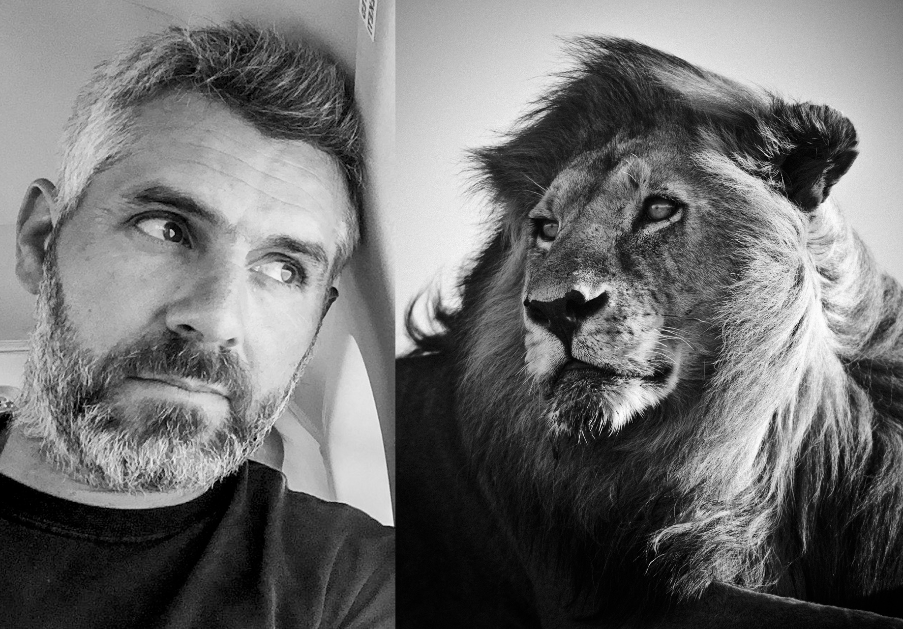 Portrait Laurent And Lion