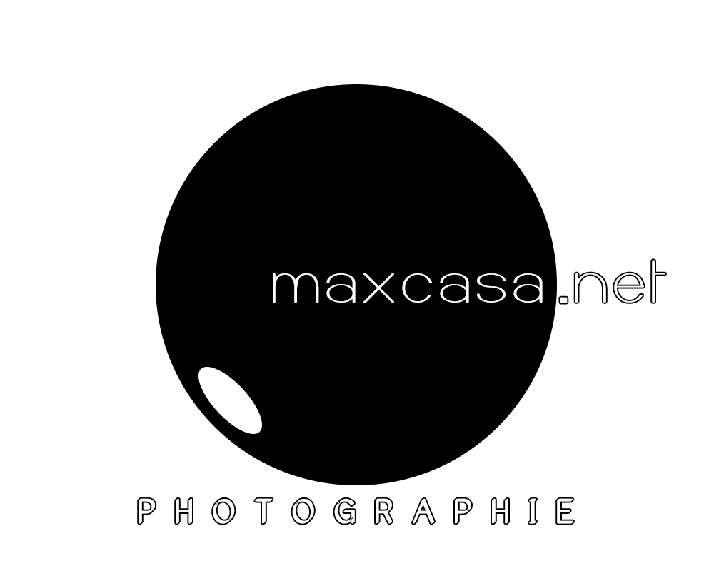 Logo Maxcasa Jan17 Site Copy