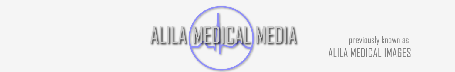 Logo Media With Am