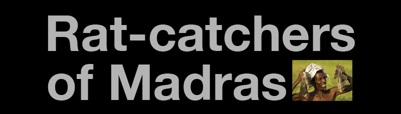 Ratcatchers Title