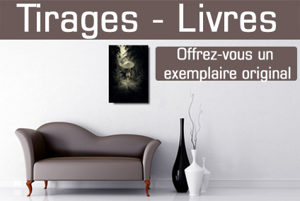 Boutique erotique: Tirage photo d'art -Livre photo erotique de nu artistique