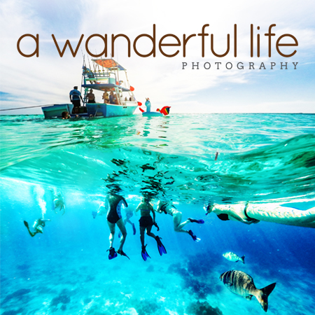 A Wanderful Life Website