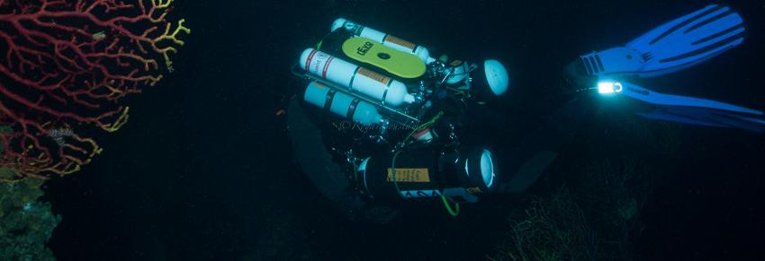 Plongeur-100m.jpg