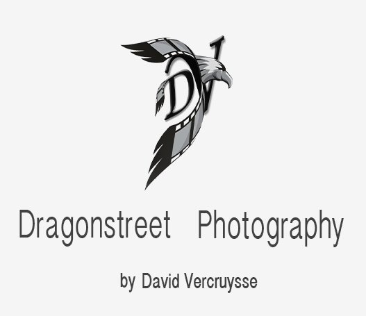 Dragonstreet Photography By David Vercruysse Grey