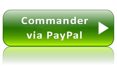 Commander Via Pay Pal 2