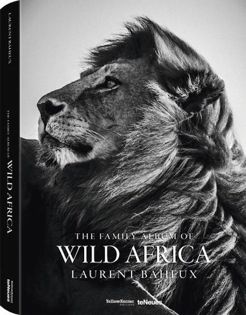 Wild Africa Small Edition