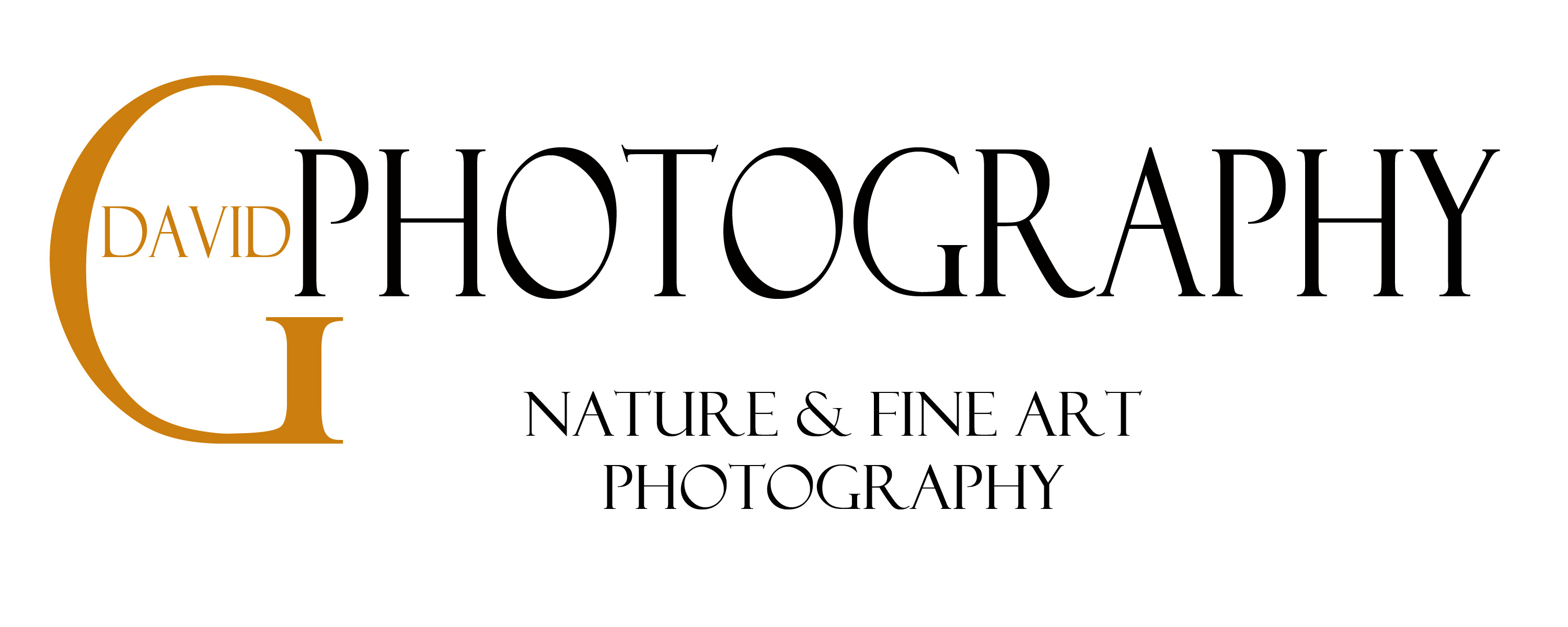 Website (Fine Art) Logo