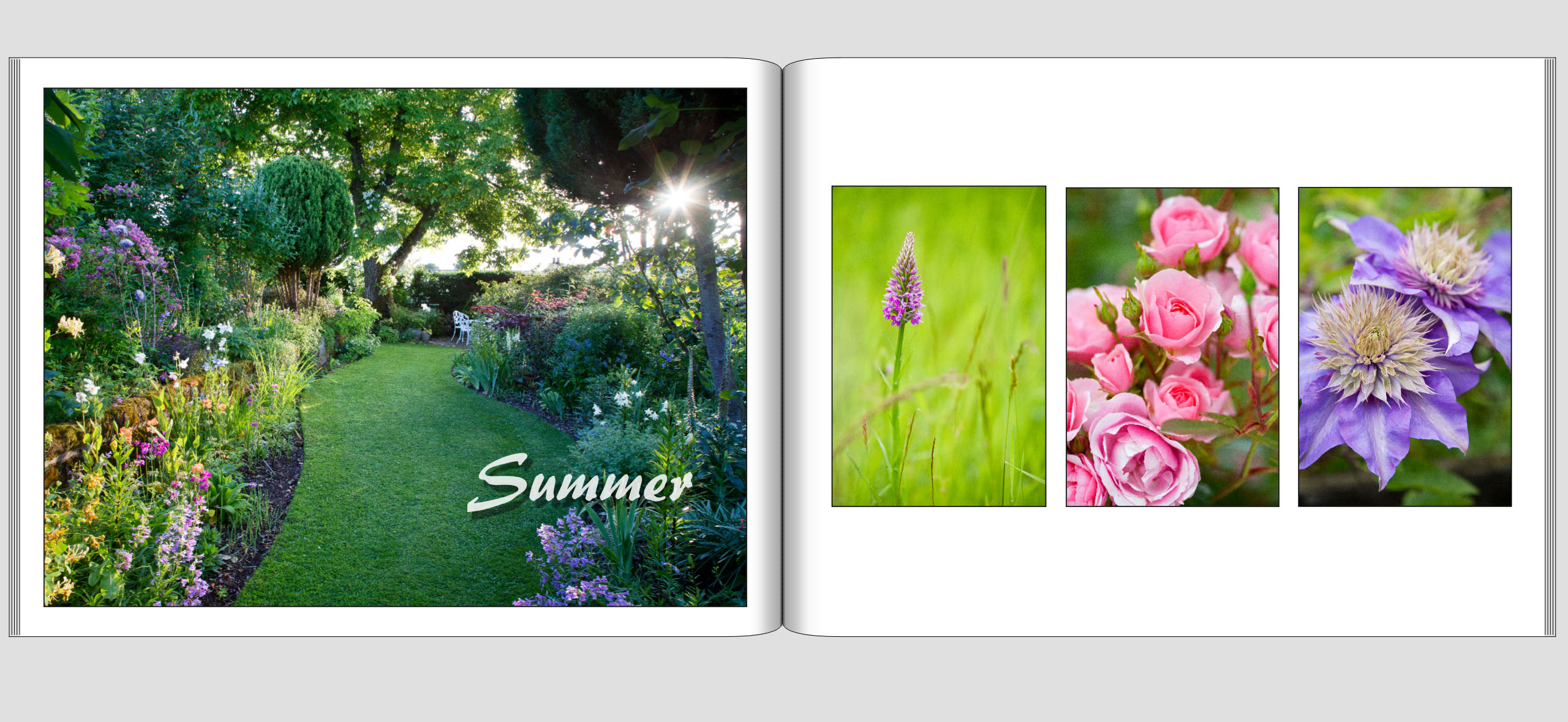 Leaves Lawns Sample Pages   Summer 1