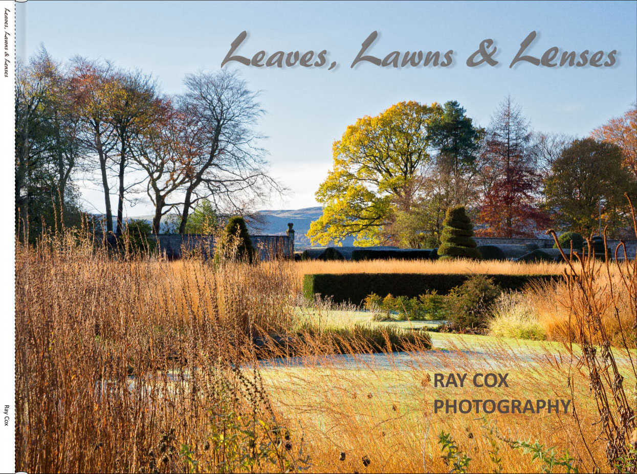 Leaves_Lawns_sample_pages_-_front_cover.jpg