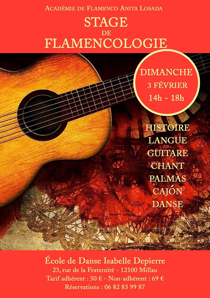 Stage Flamencologie