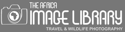 The Africa Image Library Website1