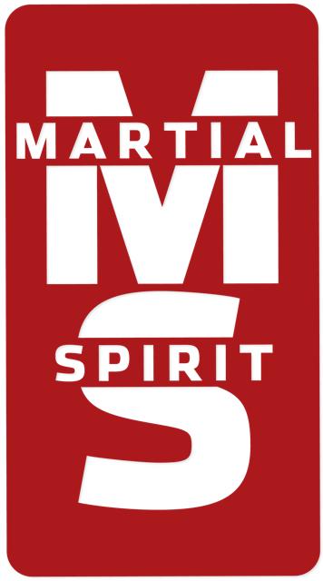 Logo Ms Hd