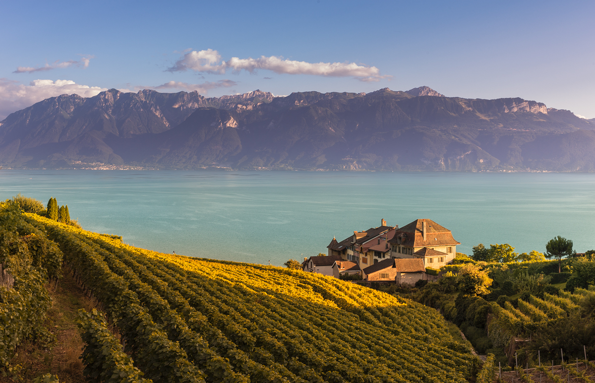 Workshop Lavaux Epesses