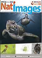 Natimage_cover.jpg