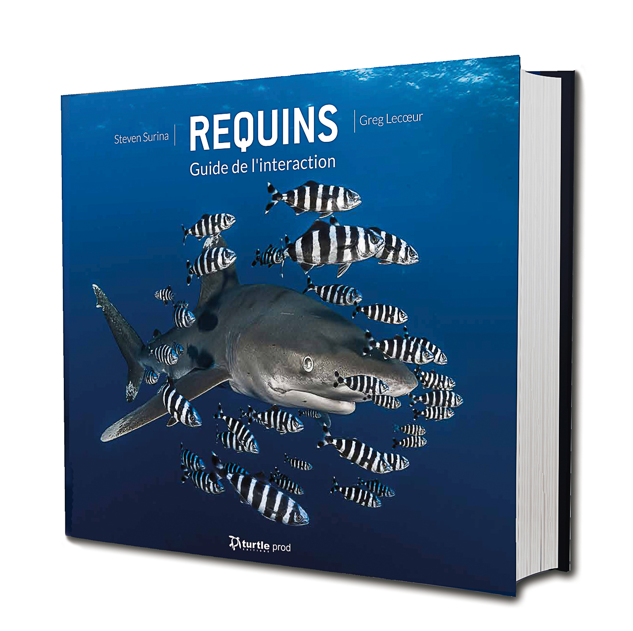 "Livre ""REQUINS Guide de l'Interaction"""