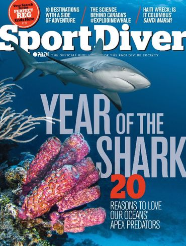 Sport_Diver_Cover_August_2014_.jpg
