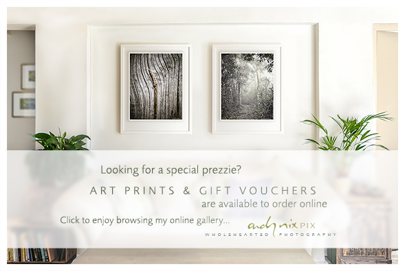 2019 Art Prints Gift Vouchers