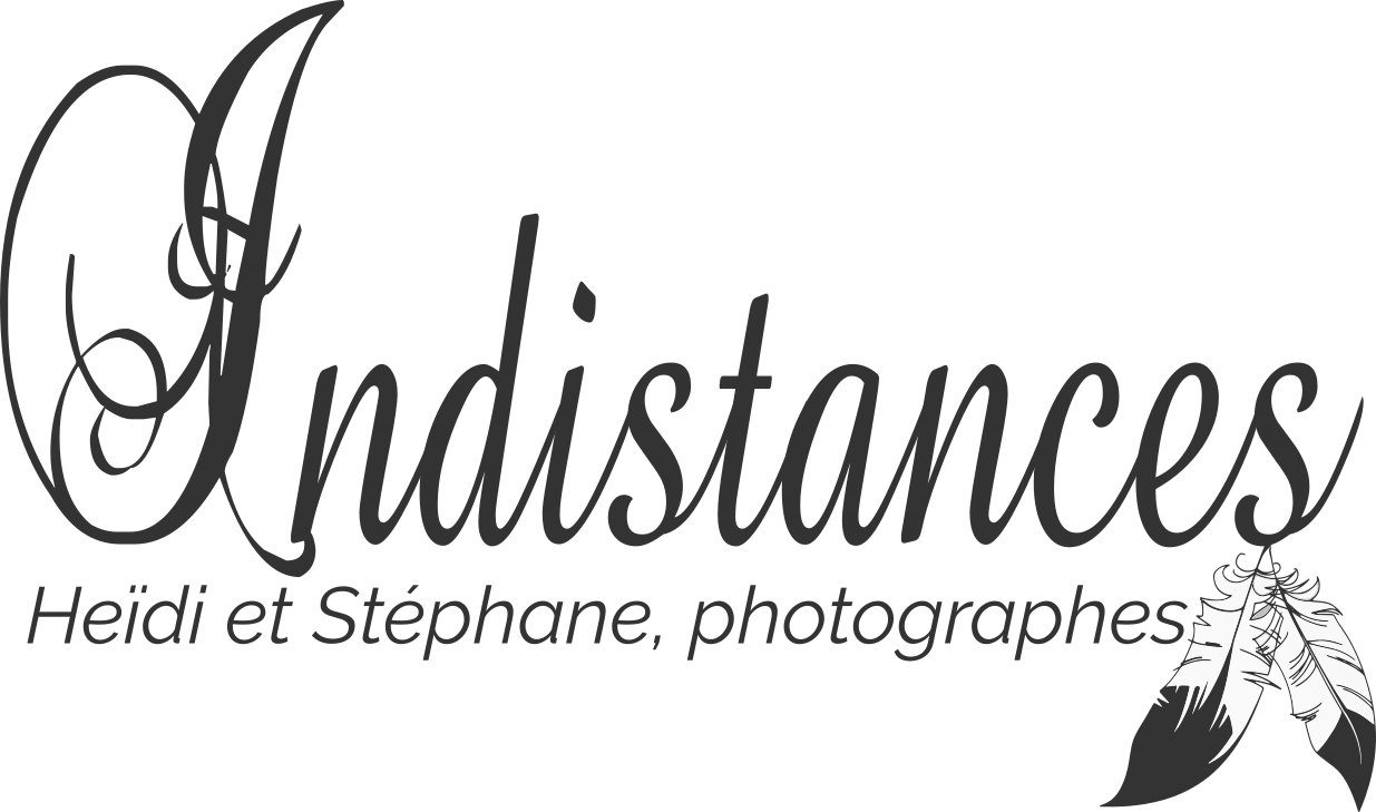 Logo Heidi Steph Black